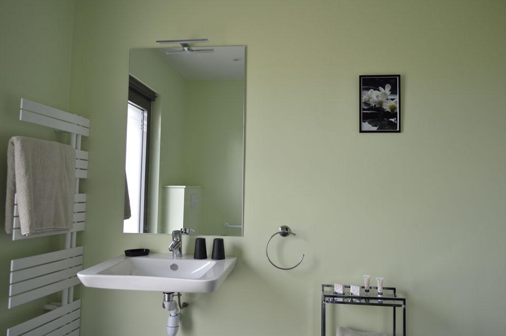 la salle de bain verte la grange des 2 pays. Black Bedroom Furniture Sets. Home Design Ideas